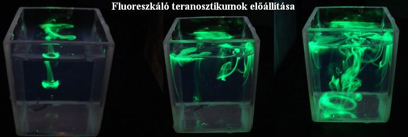 fluoresc.jpg